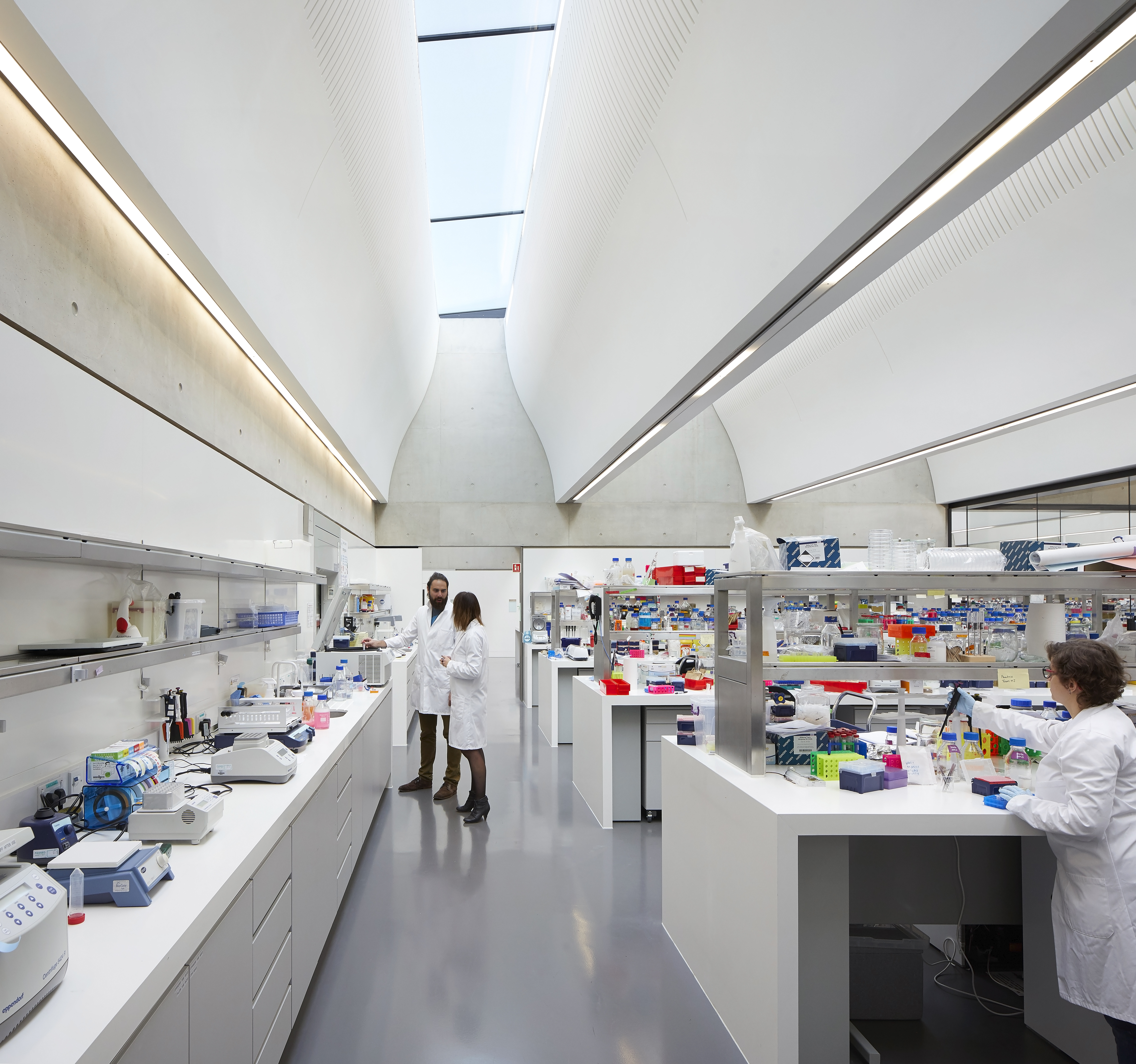 The wet lab areas within the Sainsbury Laboratory are flooded in natural light thanks to glass ceilings