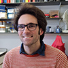 Chris Whitewoods profile image