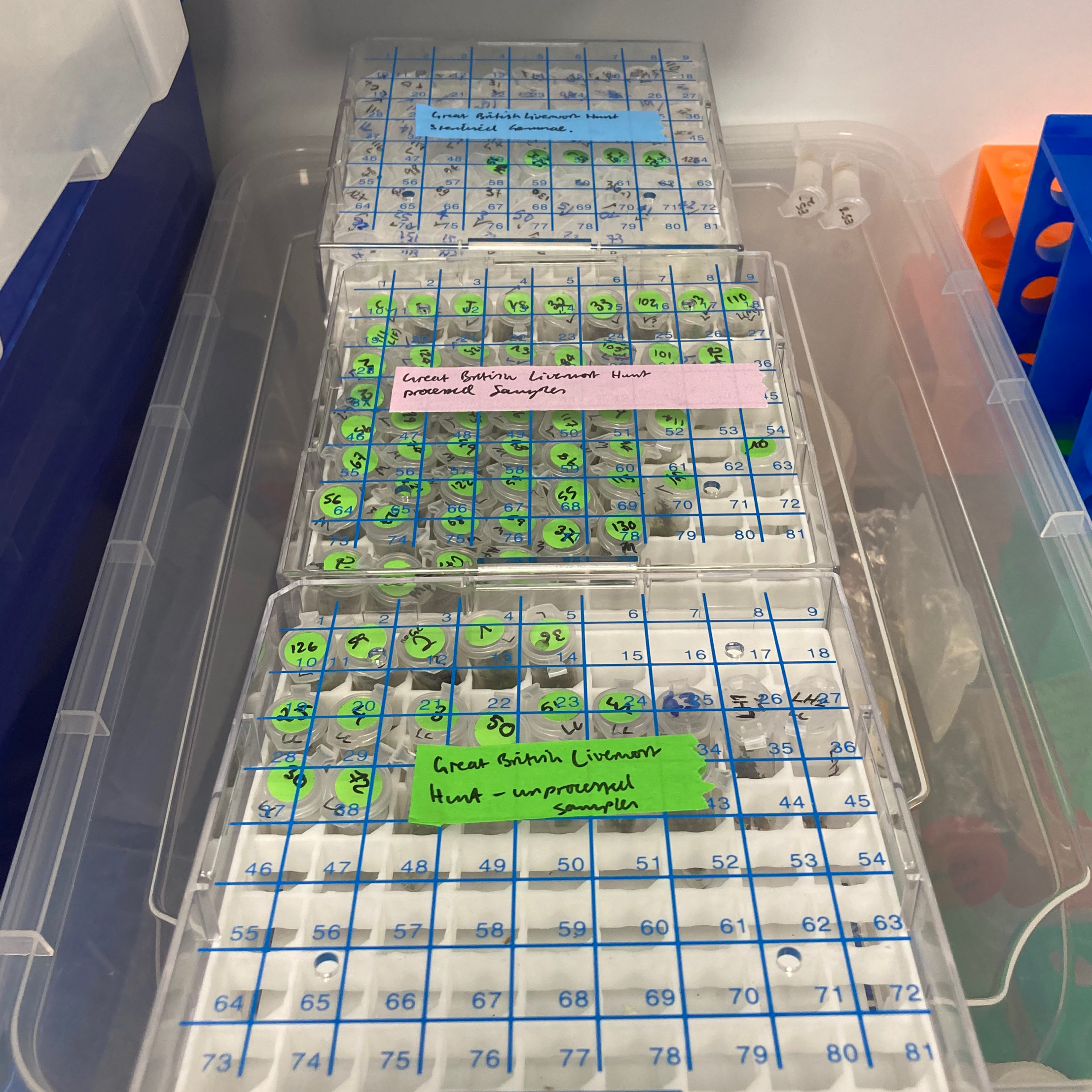 The liverwort samples go into a cold store when they arrive until we can grow them on plates